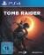 Shadow of the Tomb Raider [DE] Box Art